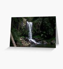 Curtis Falls - Mount Tambourine Greeting Card