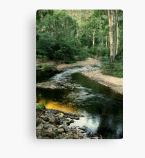 Wonangatta Valley, Victorian High Country Canvas Print