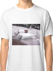 Frozen Bench  Classic T-Shirt