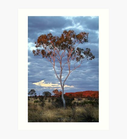 Sunset Batton Hill,North Simpson Desert Art Print