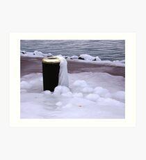 Frozen Bin  Art Print