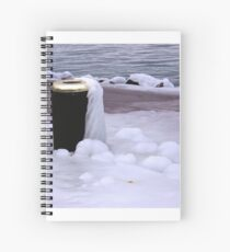 Frozen Bin  Spiral Notebook