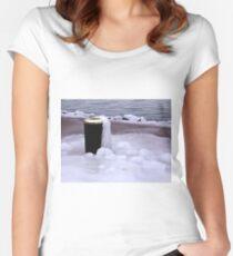 Frozen Bin  Women's Fitted Scoop T-Shirt