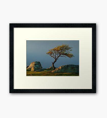 Dog Rocks, Batesford Victoria Framed Print