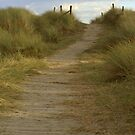 The road to nowhere by ChromaticTouch