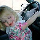 DRIVING A CAR IS FUN by Nancy Shields