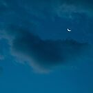 Lunar Cloud by Jim Haley