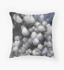Ice caps Throw Pillow