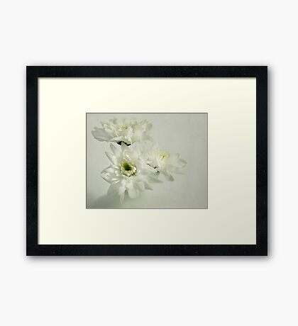 Plain white Framed Print