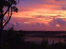 """'Lilac Dawn"""" by debsphotos"""