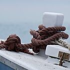 Anchor Rope 222 by kevin Chippindall