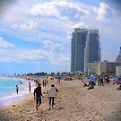 Scenes from Miami II by PJS15204