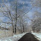 The long winter road along the Scioto by Ed Michalski