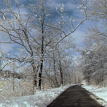 The long winter road along the Scioto by sublime
