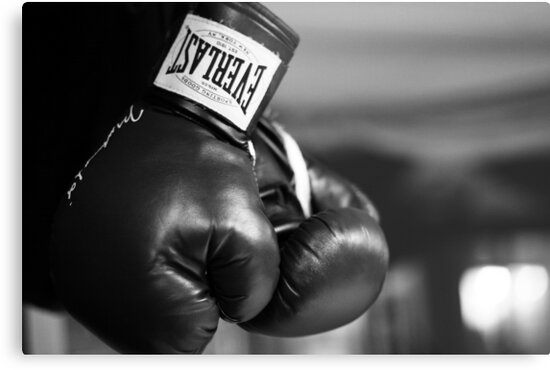 Everlast boxing gloves black and white by foodmaster