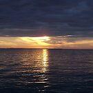 Palmlico Sound  by DianaTaylor/ JacksonDunes