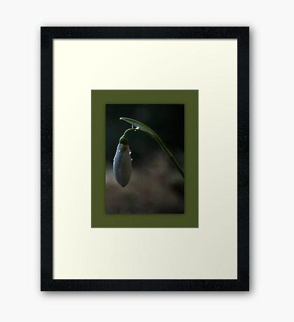 Simple Drops Framed Print