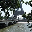 View of Eiffel Tower through Branches by Sherry Freeman