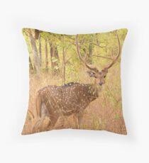 Cheetal / Spotted Deer (Bandhavgarh) Throw Pillow