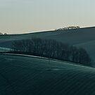 Hills by Alessio Michelini