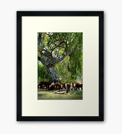 HEY YOU!...Not My Best View. Framed Print