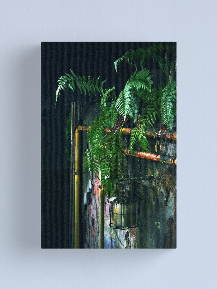 Alternate view of Ferns in abandoned hall Canvas Print