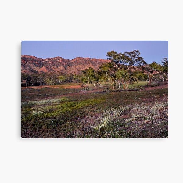 Dawn at the Heysen Range Canvas Print