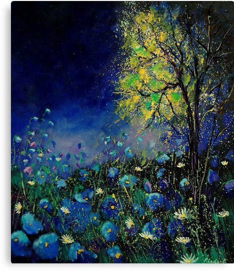 Blue poppies and daisies  by calimero