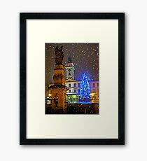 ...waiting for winter... Framed Print