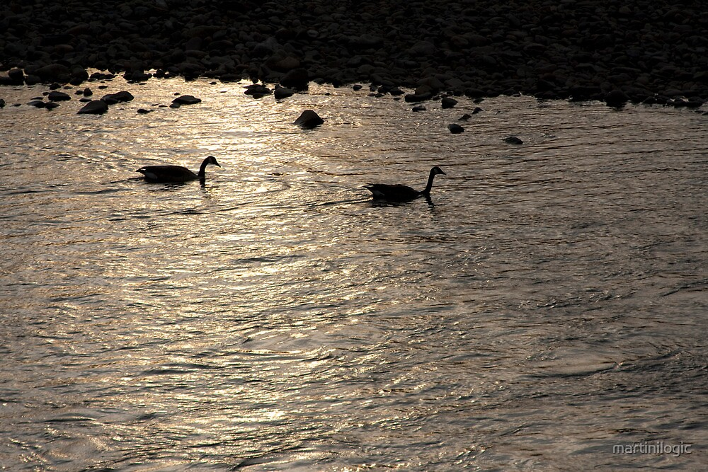 Nessy and co. by martinilogic
