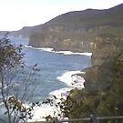 Tasmanian ocean scene by Tracey    lee Stokes