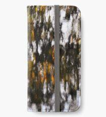 Silvery Pattern Reflection iPhone Wallet/Case/Skin