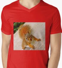 Just How Many Red Squirrels Does It Take To Drive You CRAZY? T-Shirt