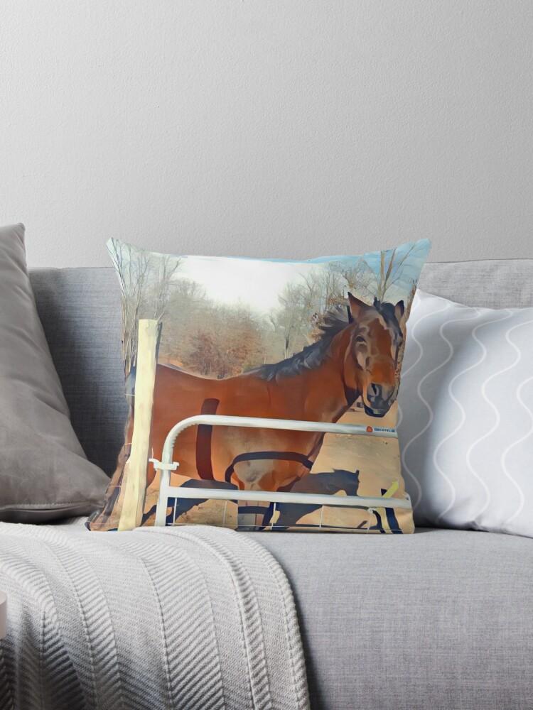 Braunes Pferd Bild von aynastasia