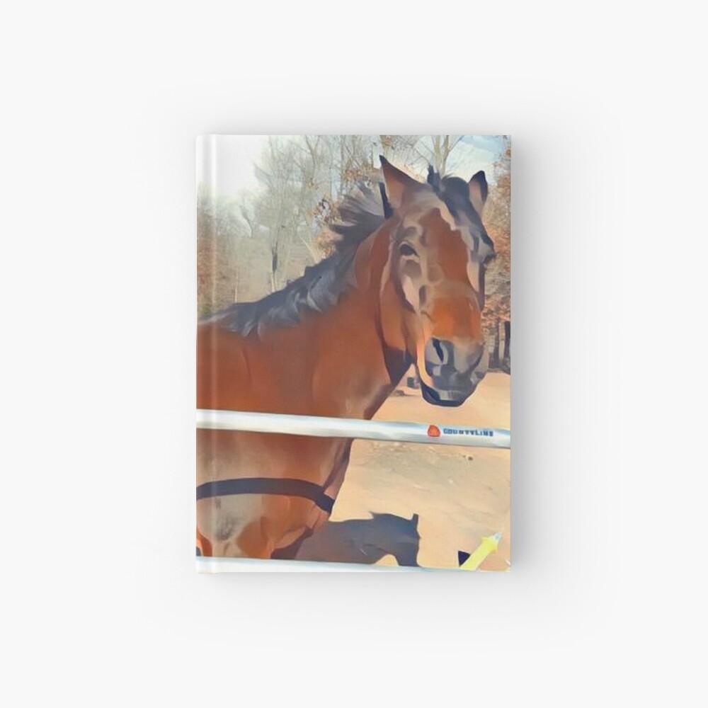 Braunes Pferd Bild Notizbuch