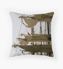 'picton castle' Throw Pillow
