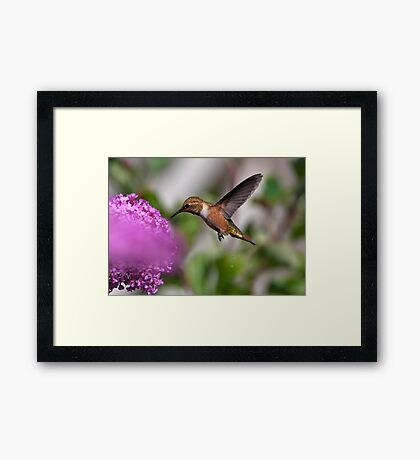 A Call of Nature! Framed Print