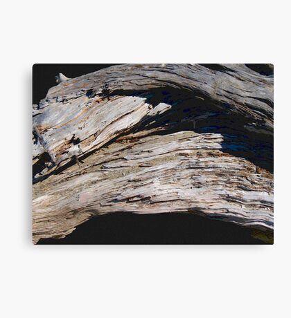 Driftwood Arch photo painting Canvas Print