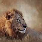 The lion denotes power, aggression and might. by Lyn Darlington