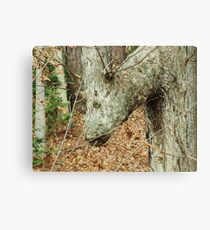 can you guess? Canvas Print