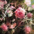 « Le rosier rose » par Fabienne Monestier