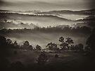 "'Low Mist"" by debsphotos"