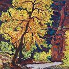 Escalante River Southern Utah by Tom Roderick