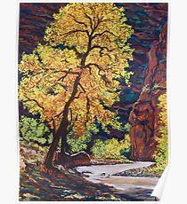 Escalante River Southern Utah Poster