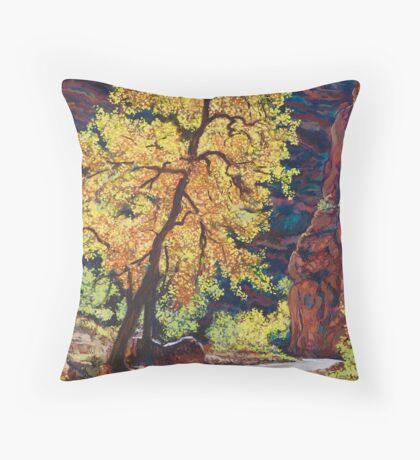 Escalante River Southern Utah Throw Pillow
