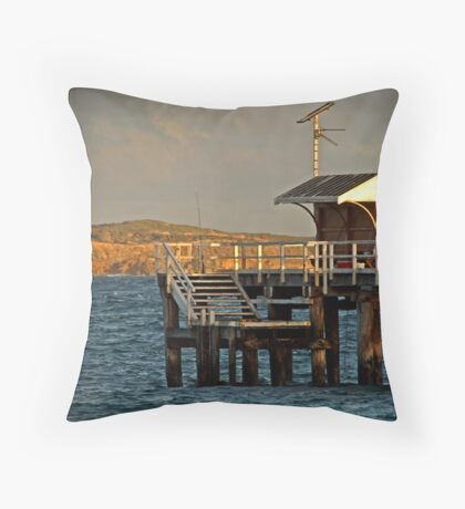 Hooked! Throw Pillow
