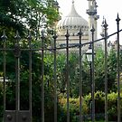 Opulence Behind The Gate by Dorothy Berry-Lound