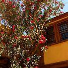The Flower tree by Mikhail Zhirnov