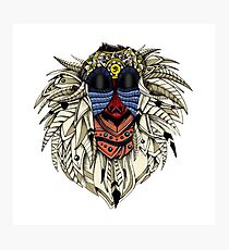 Ornate Color Rafiki Photographic Print