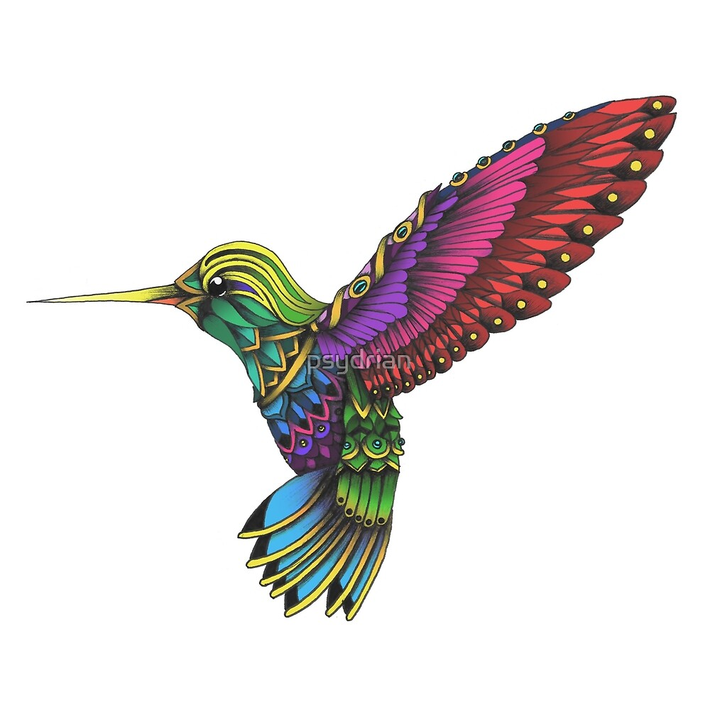 Quot Color Ornate Colibri Quot By Psydrian Redbubble